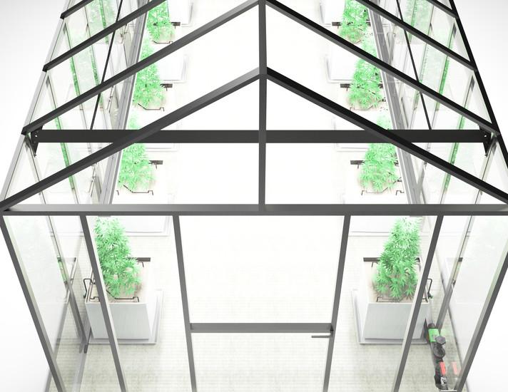Cannabis Greenhouse Ilustration