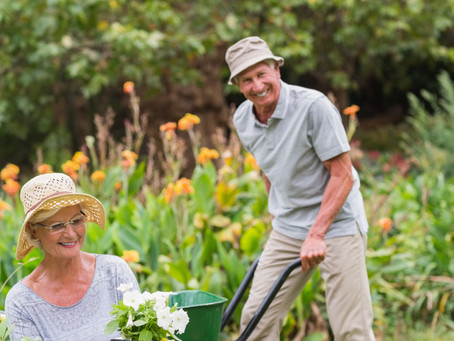 """3 Summer """"Social"""" Activities for Seniors With Hearing Loss"""
