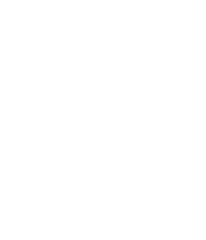 Mayel straight logo.png