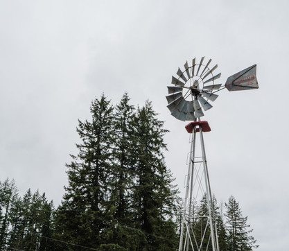Silo Bar & Windmill