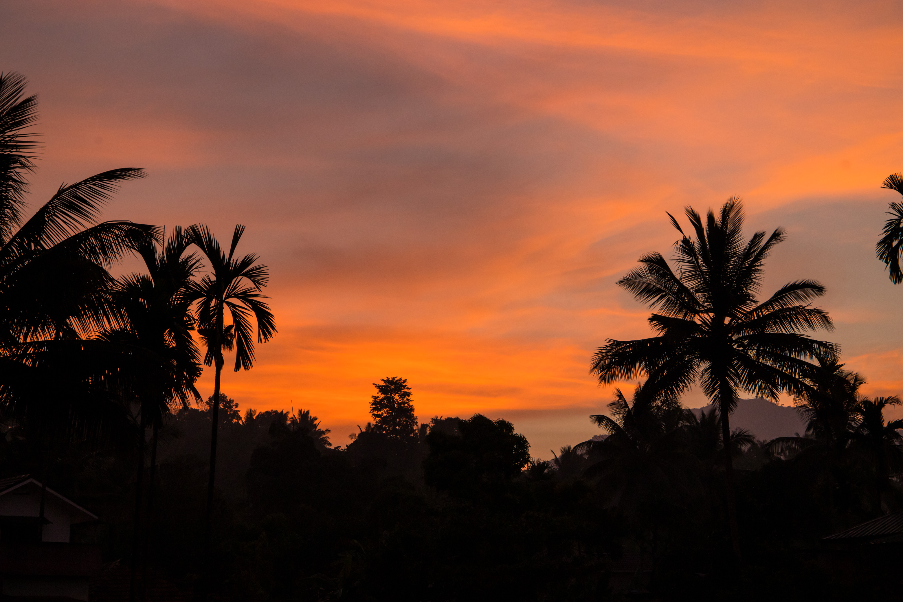 Wayanad, Kerala, Sunrise