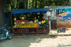 Fruit, Everywhere.
