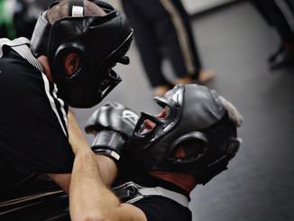 Adult Mixed Martial Arts