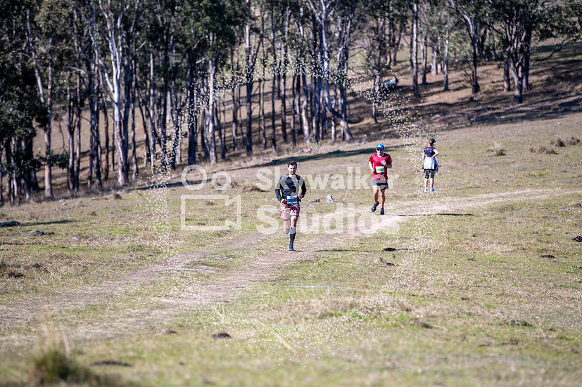 Run Dungog 2019 Digital (186 of 194)