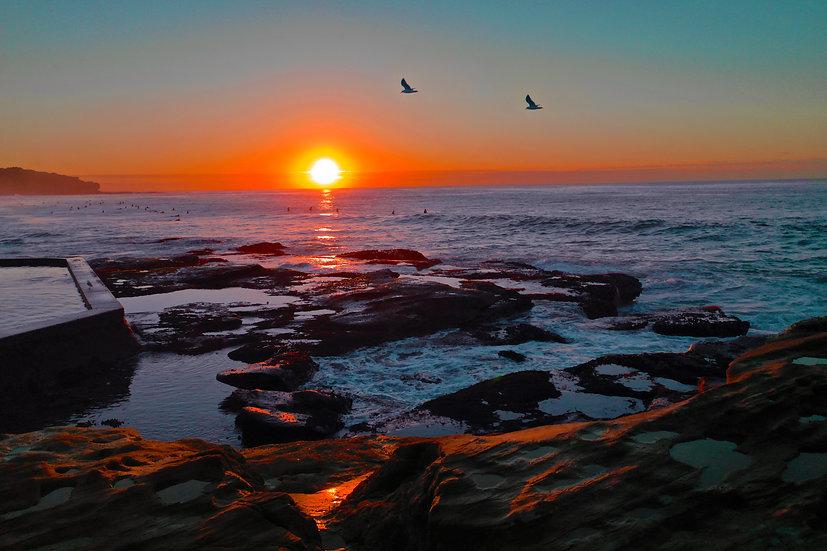 Sunrise, Curl Curl NSW 75 x 50cm