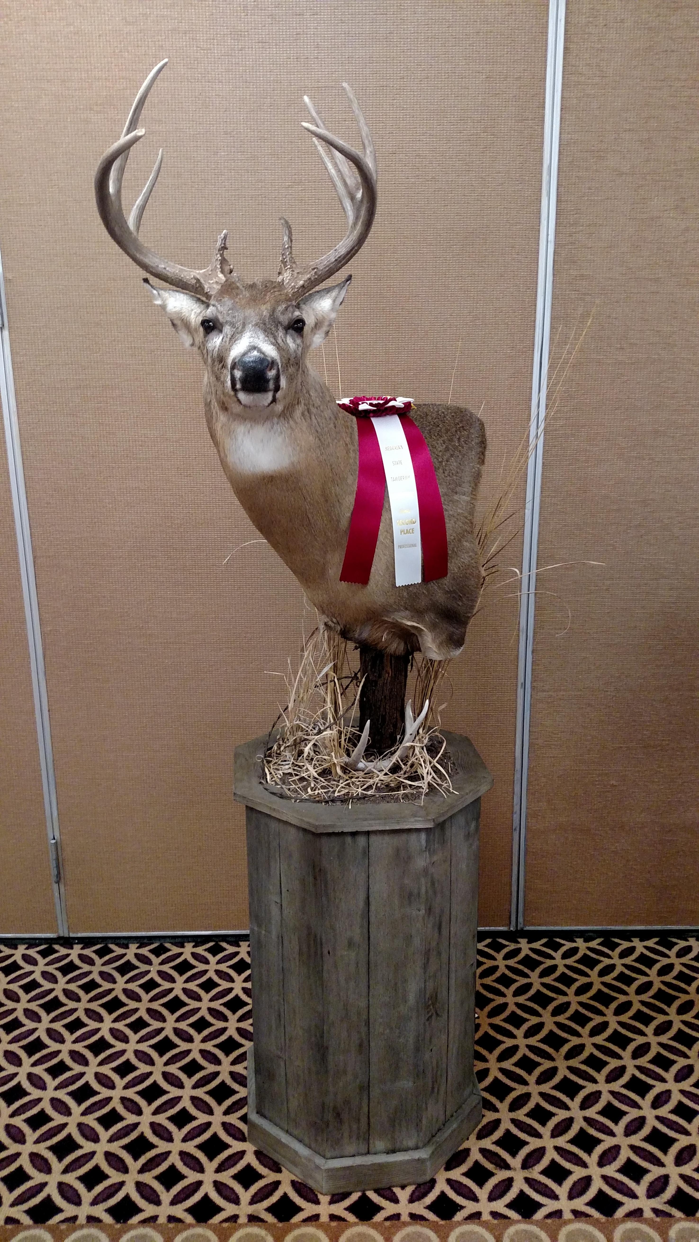 2015 Nebraska Taxidermy Competition