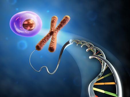 L'épigénétique, une nouvelle science qui bouleverse les anciens paradigmes