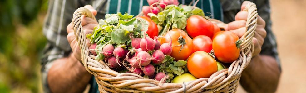 Shop su I Prodotti del contadino