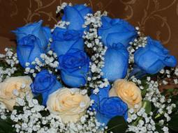 Rosas en bouquet
