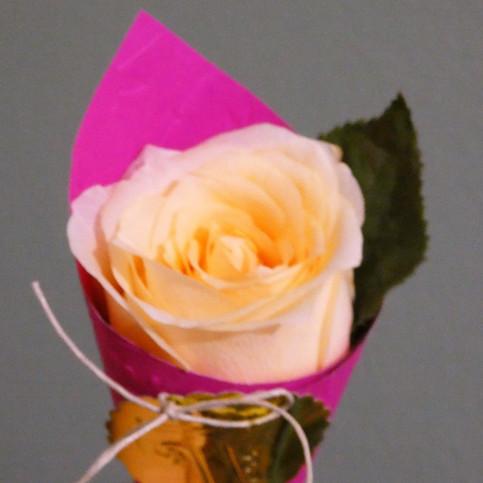 Souvenir floral