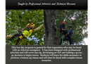 Arborist Rescue For First Responders Course Offered