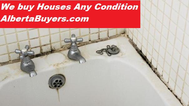 Bathroom-Mold-Alberta Buyers-We Buy Houses Any Condition