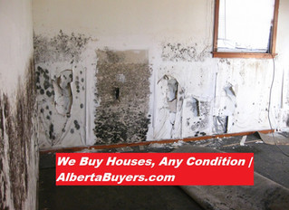 Signs of Mold in House | Calgary, AB | Sell your House Fast