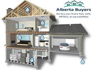 Mold in House on Walls, Ceiling, Windows | Calgary, AB | We Buy Houses Any Condition