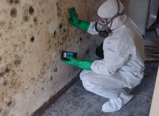Mold Inspection | Calgary, AB | We Buy Houses Any Condition