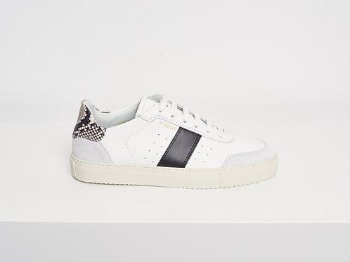 Axel Arigato, Sneaker DUNK