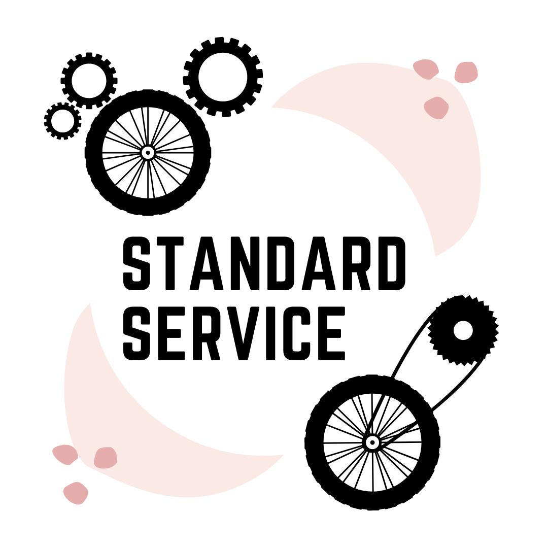 Standard Service - Return time: 3 days