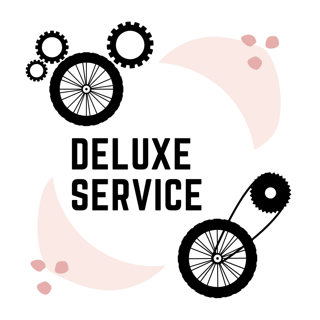 Deluxe Service - Return time: 3 days