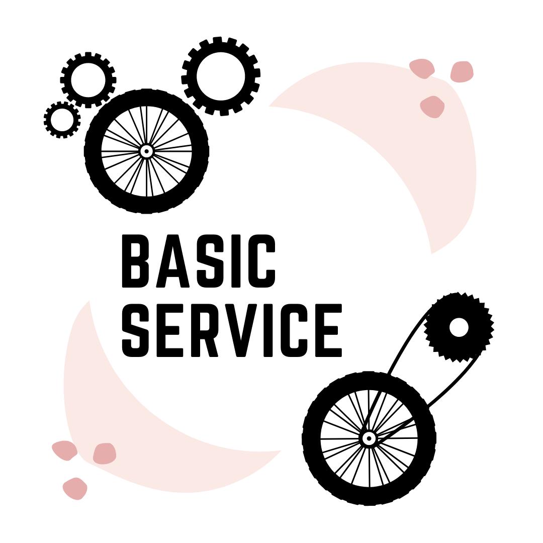Basic Service - Return time: 2 days