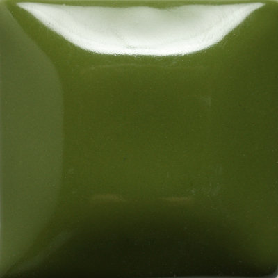 D40 Olive