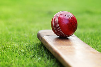 cricket-ball-bat.jpg