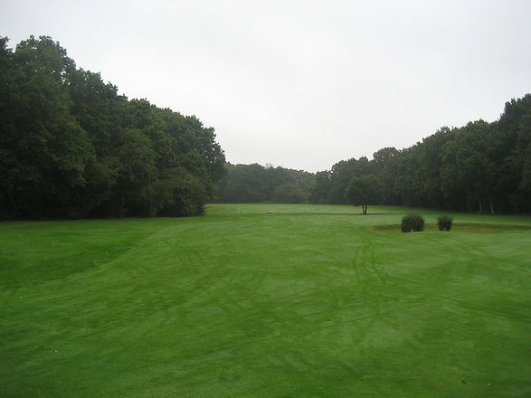 Nuffield_Common_Golf_Course_-_geograph.org.uk_-_592058.jpg