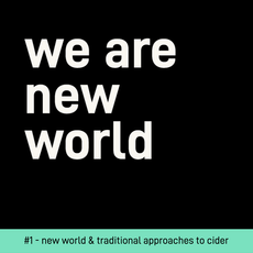 WE ARE NEW WORLD