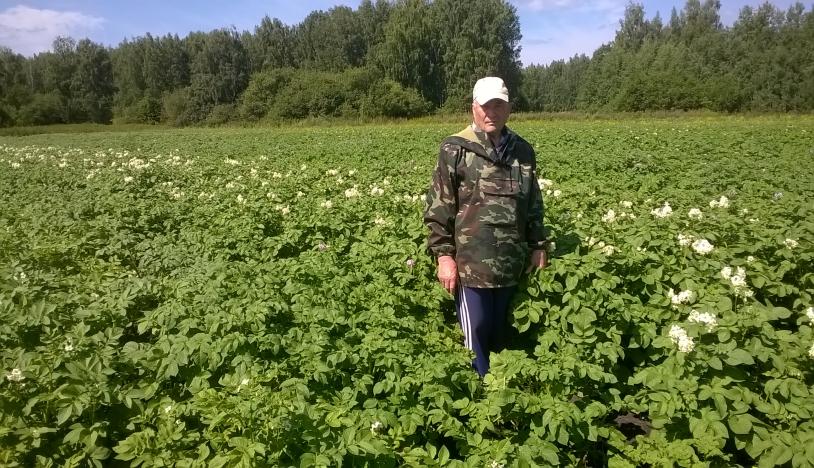 Заведующий лаборатории селекции картофеля профессор, доктор с.-х. наук Логинов Ю.П.