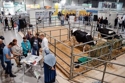 Выставка «Прибыльное животноводство» пройдет в Краснодаре 21–23 октября