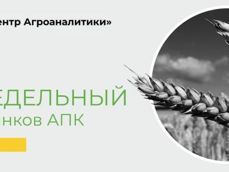 Еженедельный обзор рынка зерновых от 7 апреля