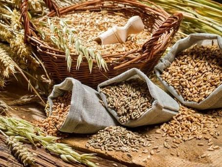 Основным видом импортируемой продукции в Российскую Федерацию стали корма и кормовые добавки