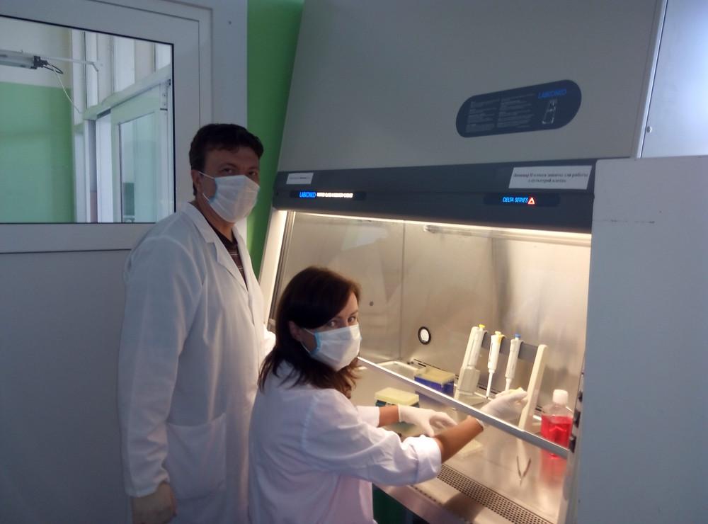 Молекулярные исследования (ПЦР)