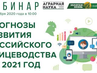 Прогнозы развития российского птицеводства на 2021 год