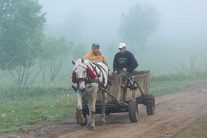 Hästskjuts i Transylvanien