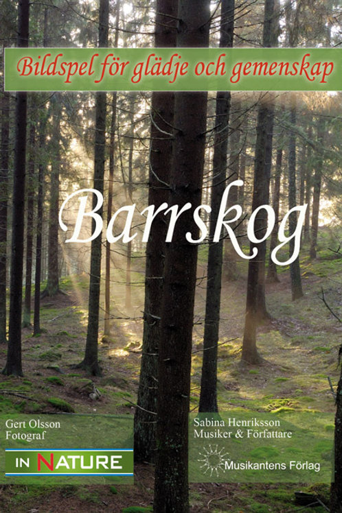 DVD Barrskog