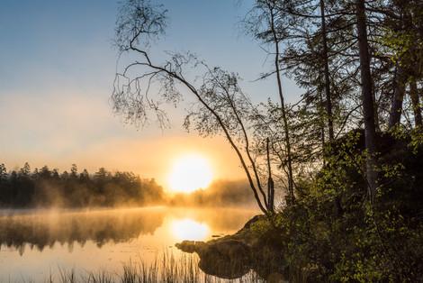 Soluppgång, Skephult, Västergötland
