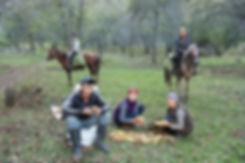 Valnötsskog i Kirgizistan