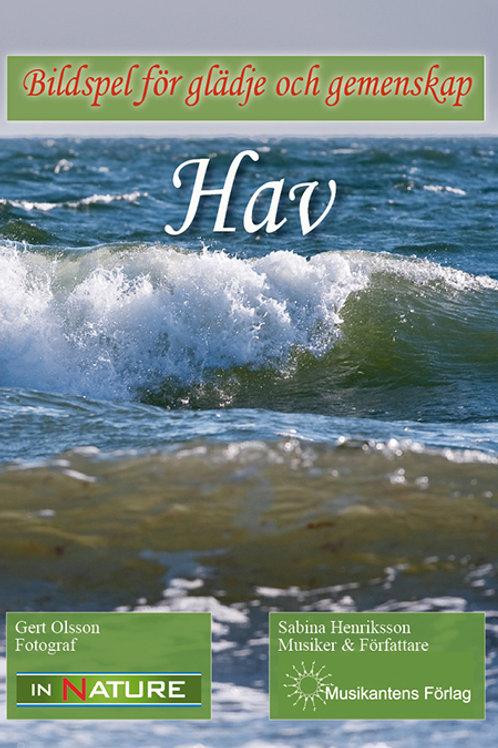 DVD Hav