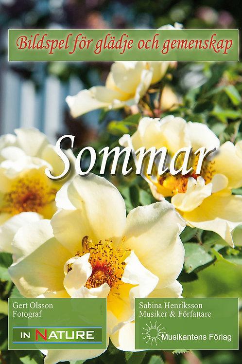 DVD Sommar