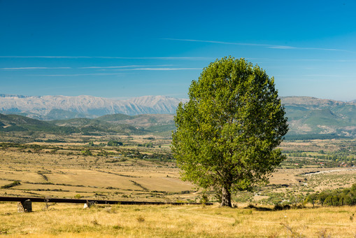 Rehova, Albanien