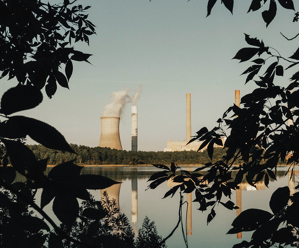 Photo of green trees by Georgia Power Plant Scherer.