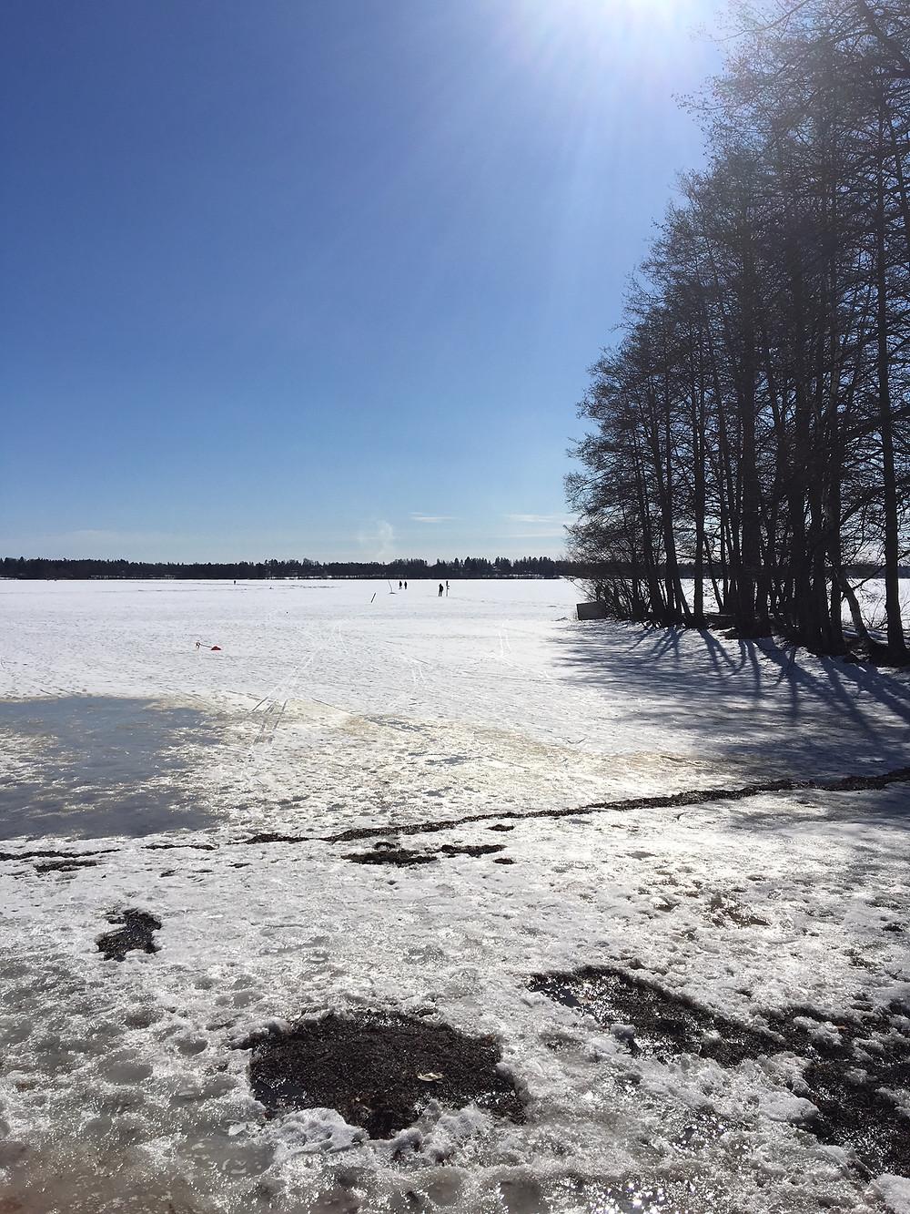 Aurinkoinen päivä houkutteli ulkoilijoita vielä järvelle hiihtämään, luistelemaan ja kävelemään.