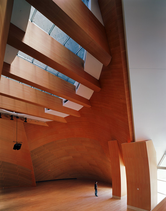 Frank Gehry #4