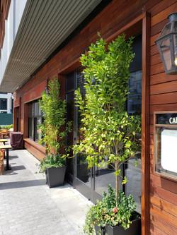 9 - Pier 17 Restaurant