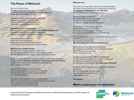 World Wetlands Day 2021 - an ode to the #PowerOfWetlands