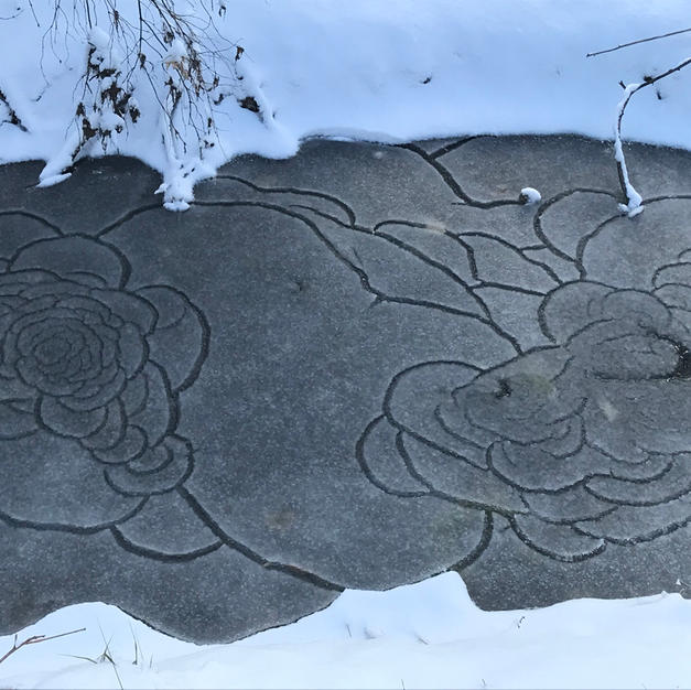 Patterns In a Frozen Creek