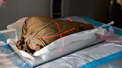 Pet-mummies
