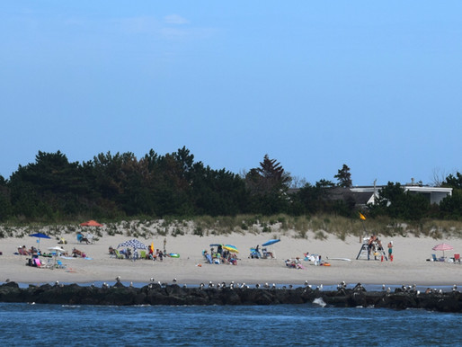 """Cape May Point: Dolphins at Jetties, """"The Rips,"""" St. Mary closes, Swim with Caution"""