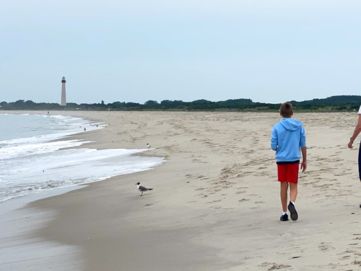 Cape May Point Parks: Crescent Beach, Abandoned Town Replaced by Birds, Lighthouse and Namaste