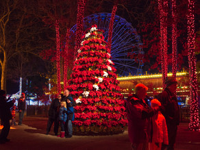 Six Flags: Lights, Santa's Village & Rides on Weekends; Drive Thru Lights on Weeknights